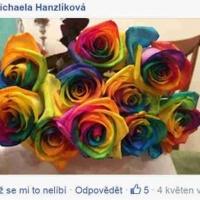 Duhové růže - spokojení zákazníci